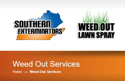 Business logo of Weed-Out Lawn Spray LLC