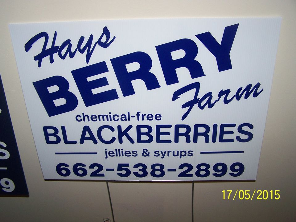 Business logo of Hays Berry Farms