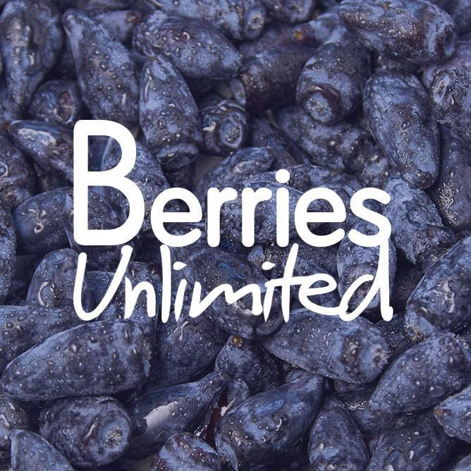 Company logo of Berries Unlimited