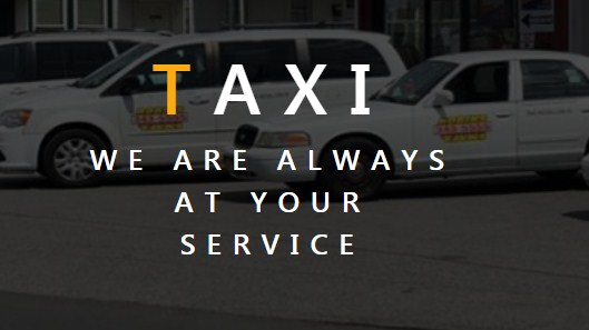 Business logo of Robins Taxi
