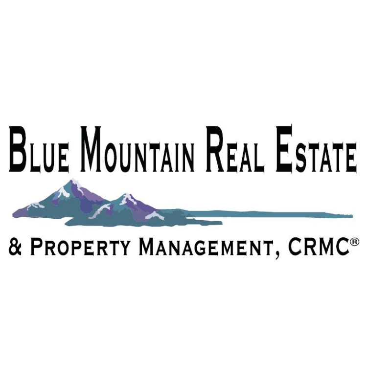Company logo of Blue Mountain Real Estate & Property Management CRMC