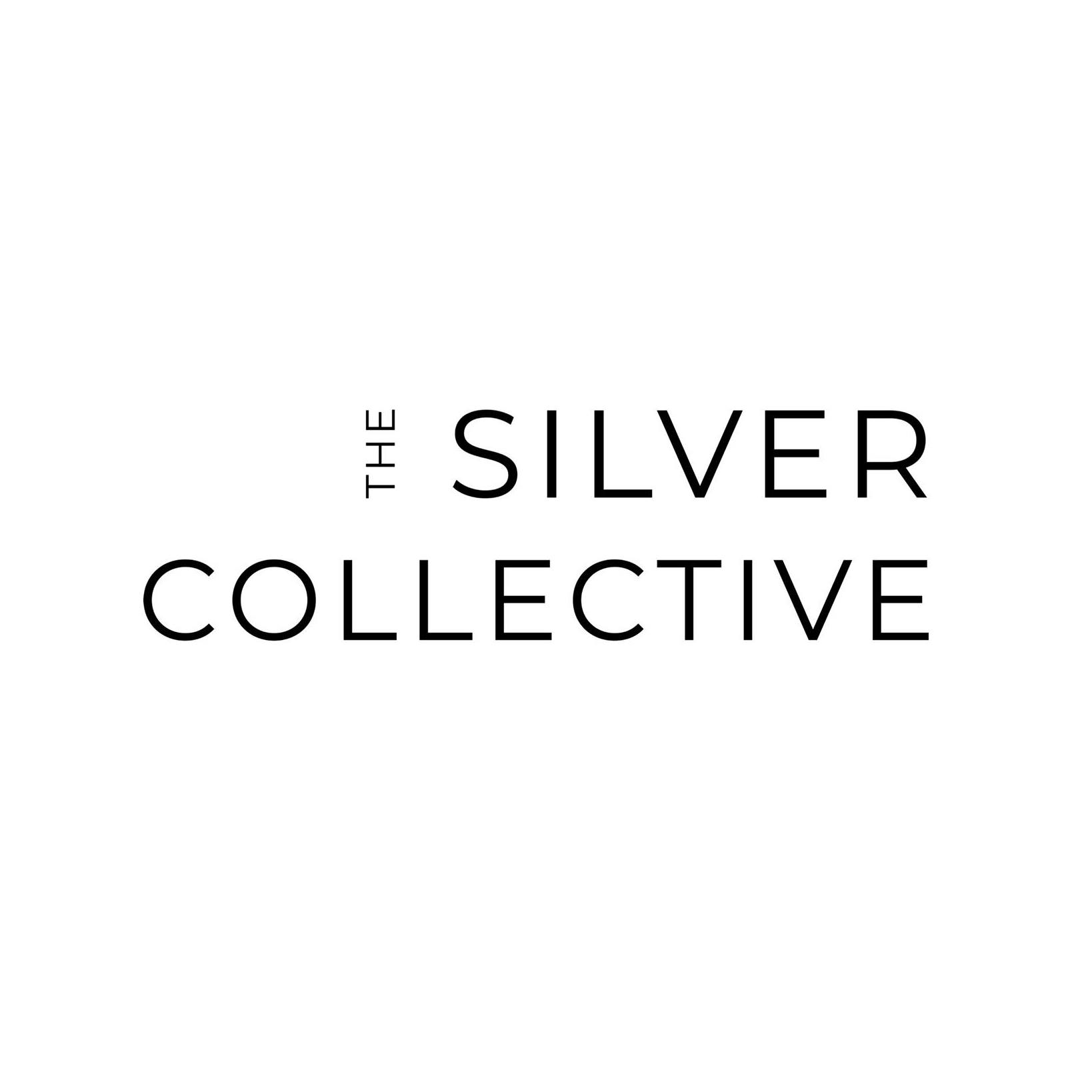 Business logo of The Silver Collective