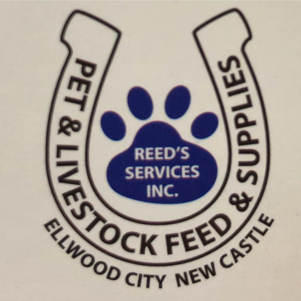Business logo of Reed's Services, Inc